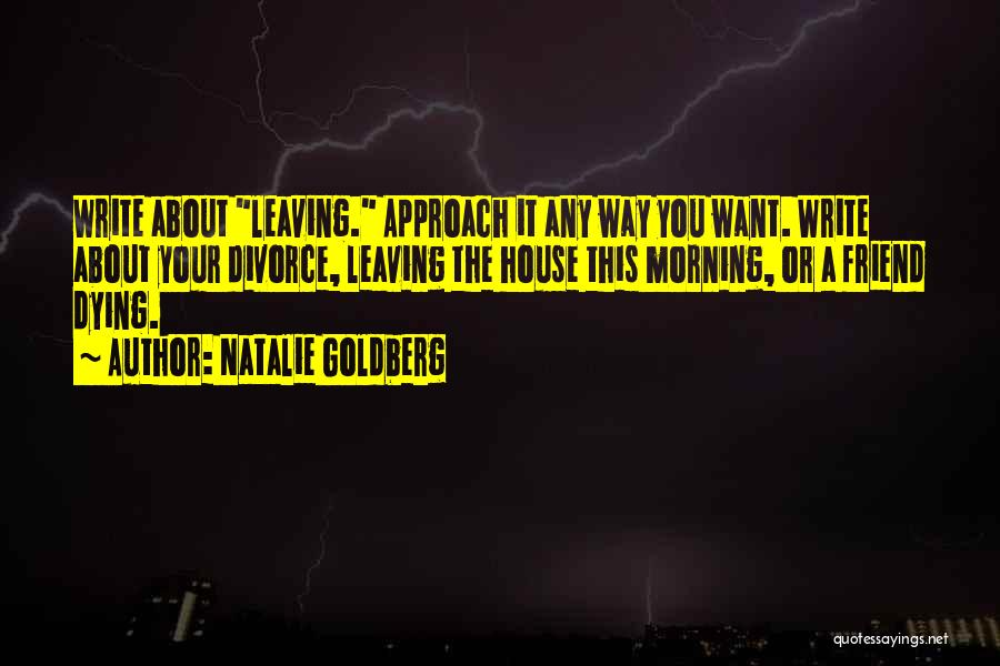 Dying For A Friend Quotes By Natalie Goldberg
