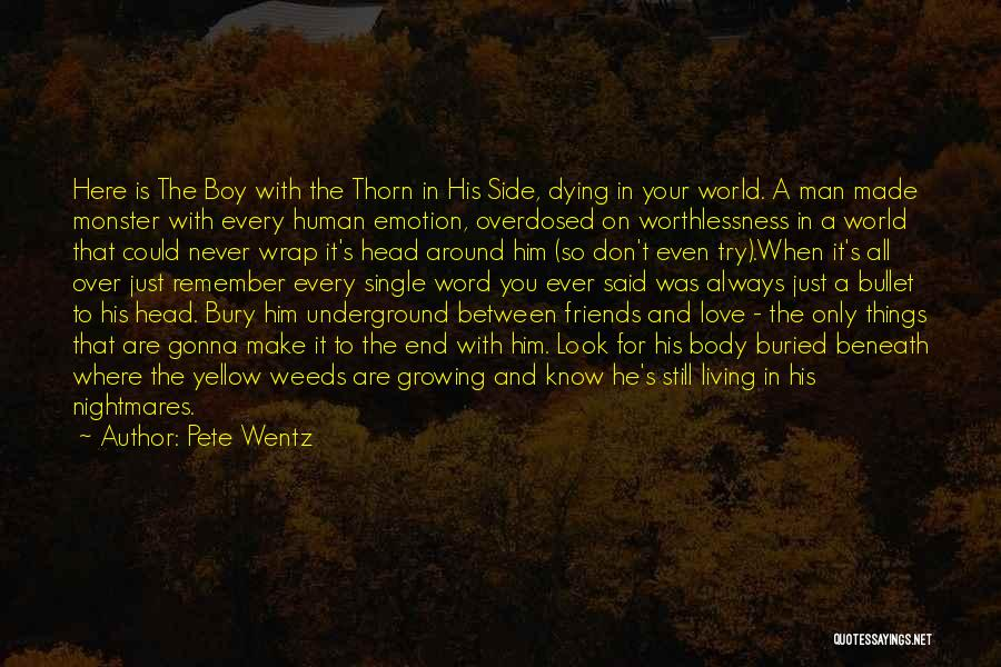 Dying For Your Friends Quotes By Pete Wentz
