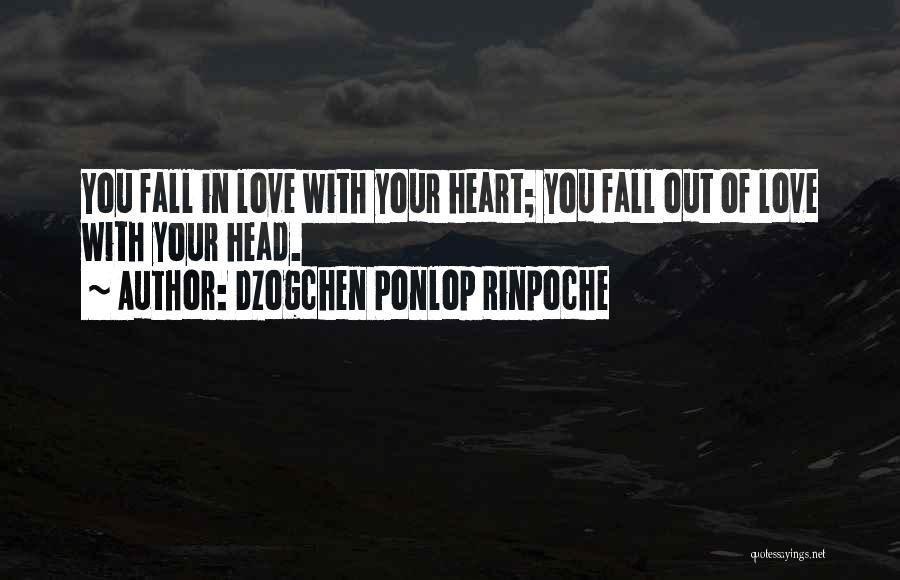Dzogchen Ponlop Rinpoche Quotes 1336297