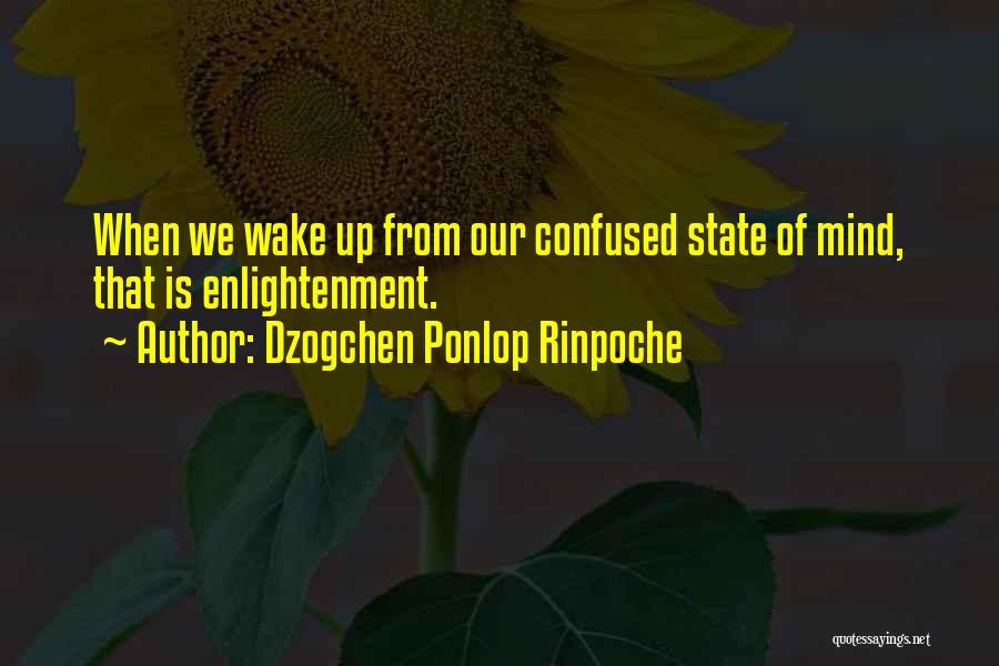 Dzogchen Ponlop Rinpoche Quotes 1478578