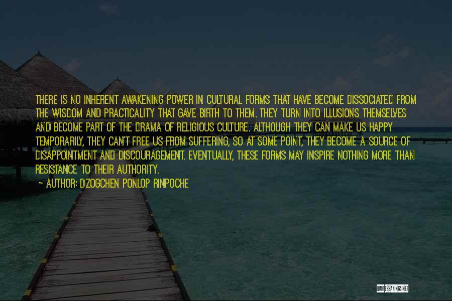 Dzogchen Ponlop Rinpoche Quotes 1504080