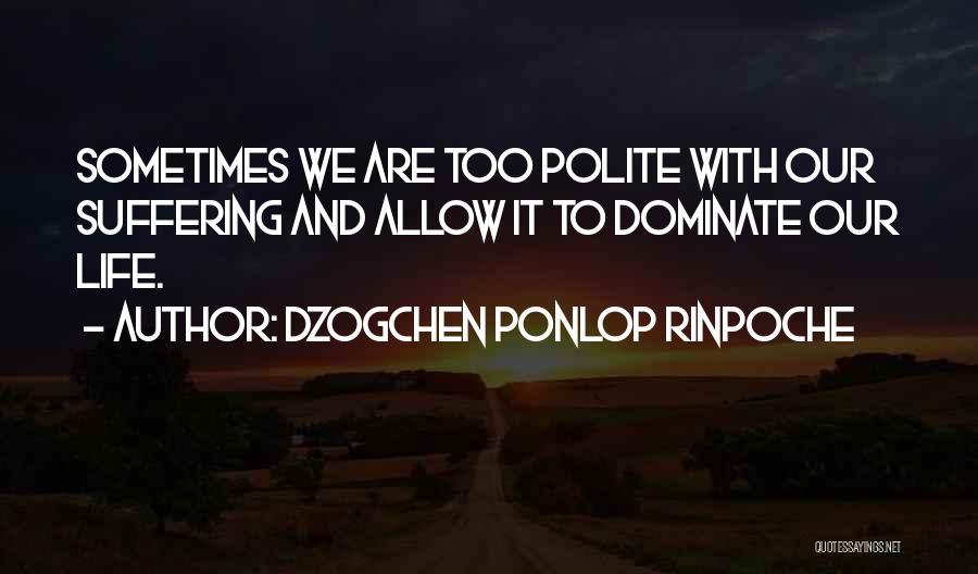 Dzogchen Ponlop Rinpoche Quotes 1555283