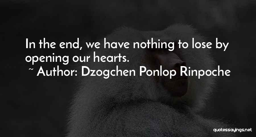 Dzogchen Ponlop Rinpoche Quotes 1733641