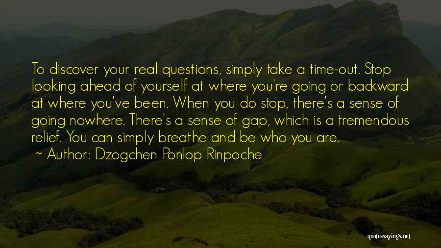 Dzogchen Ponlop Rinpoche Quotes 1874126