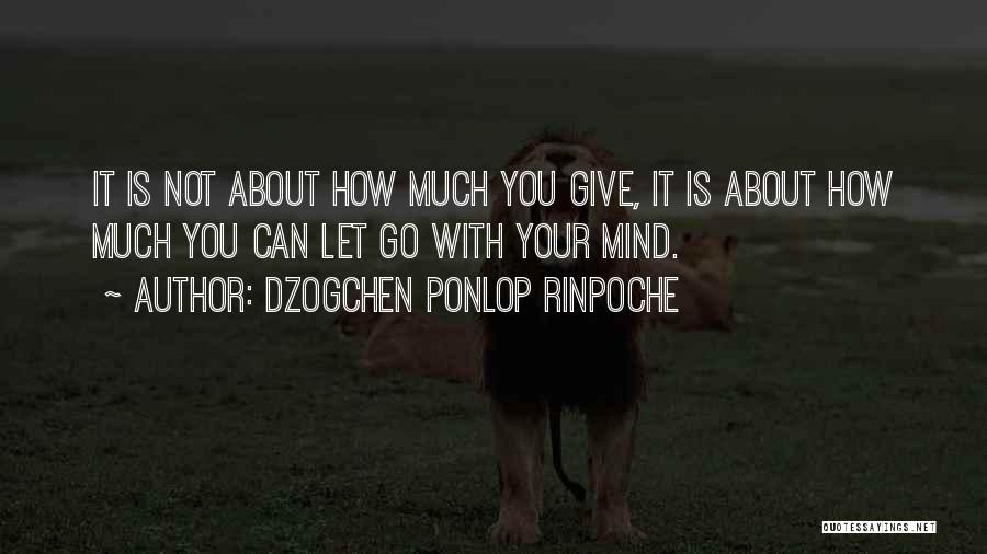 Dzogchen Ponlop Rinpoche Quotes 2043947