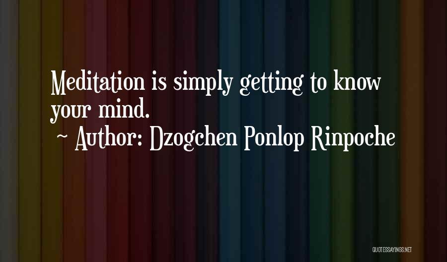 Dzogchen Ponlop Rinpoche Quotes 401079