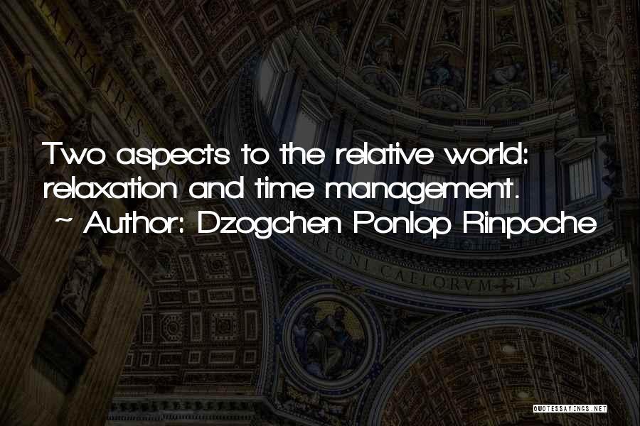Dzogchen Ponlop Rinpoche Quotes 501043