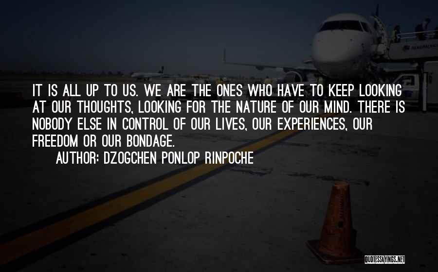 Dzogchen Ponlop Rinpoche Quotes 766147