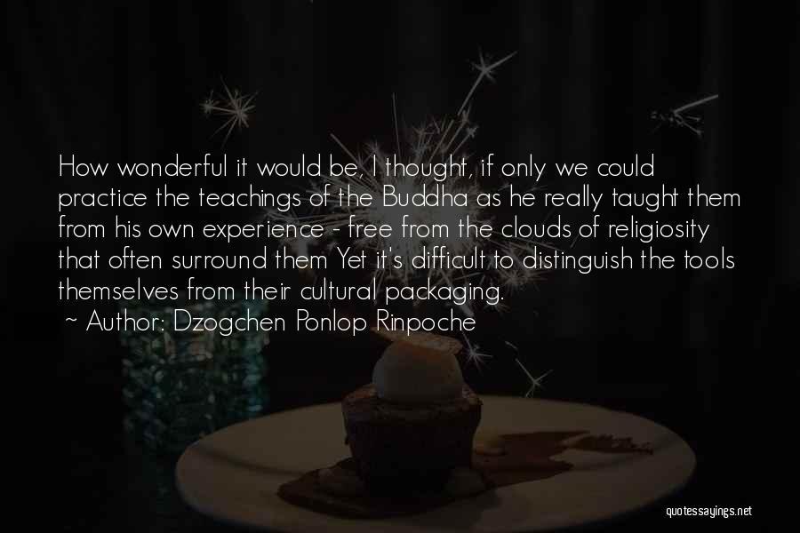 Dzogchen Ponlop Rinpoche Quotes 899253