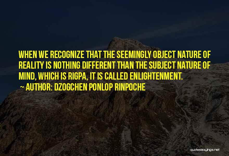 Dzogchen Ponlop Rinpoche Quotes 998352