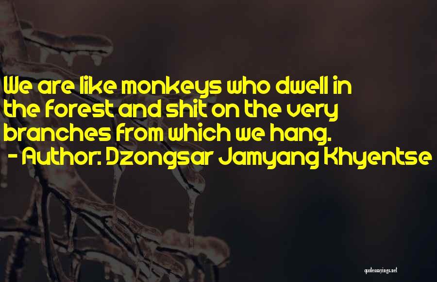 Dzongsar Jamyang Khyentse Quotes 1056711