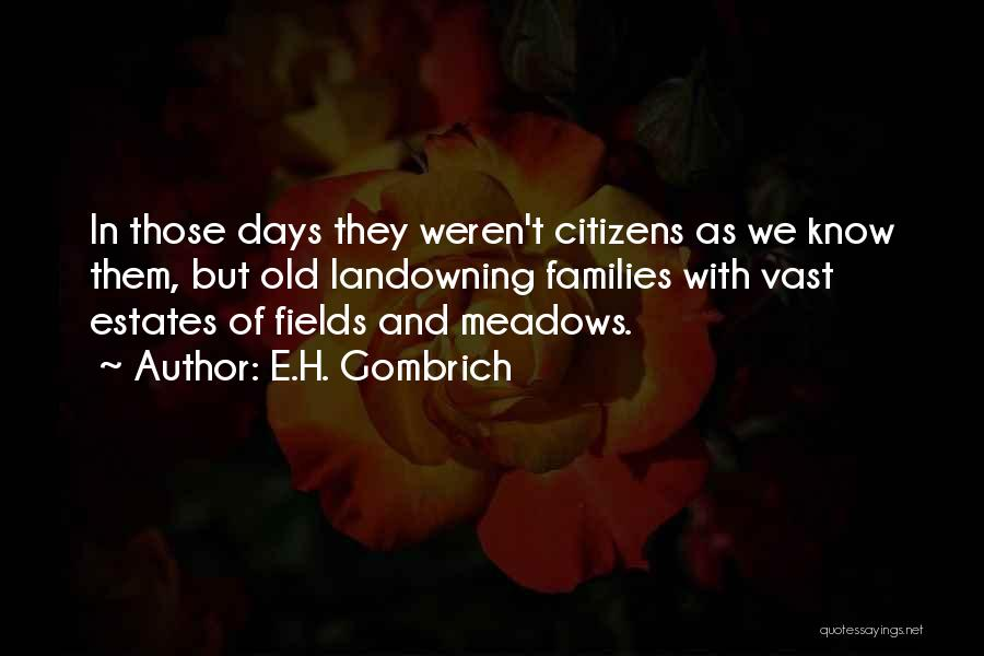 E.H. Gombrich Quotes 286853
