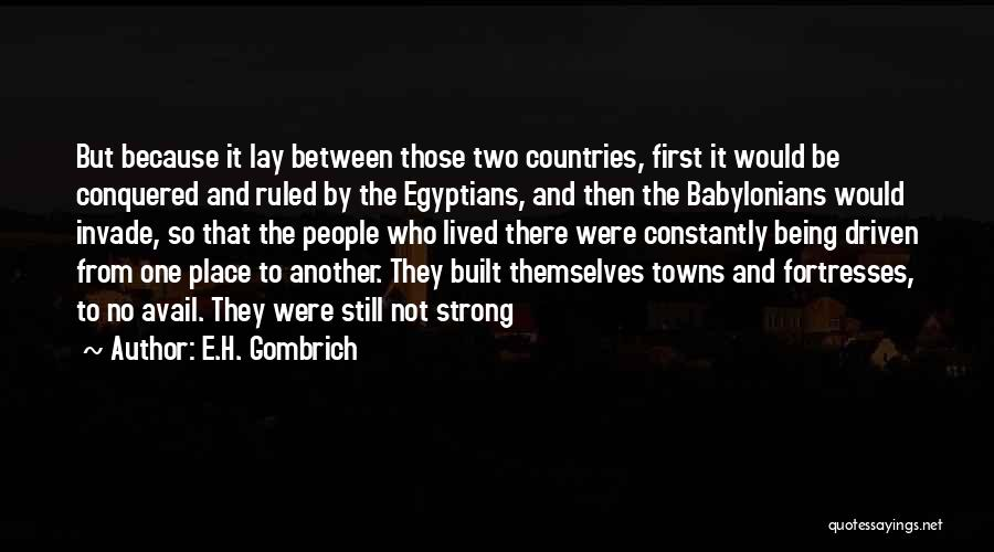E.H. Gombrich Quotes 999875