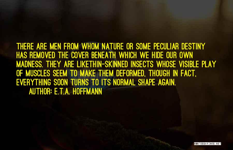 E.T.A. Hoffmann Quotes 980643