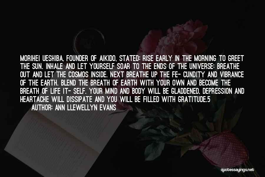 Early To Rise Quotes By Ann Llewellyn Evans