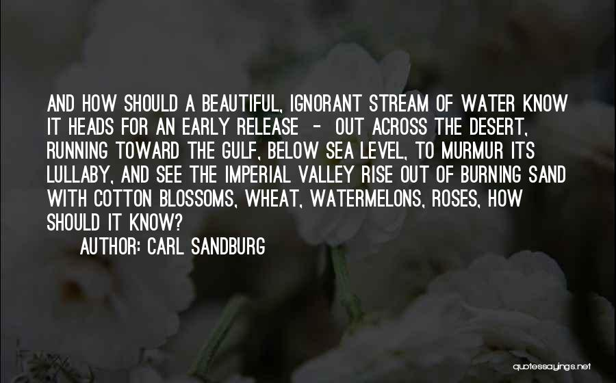Early To Rise Quotes By Carl Sandburg
