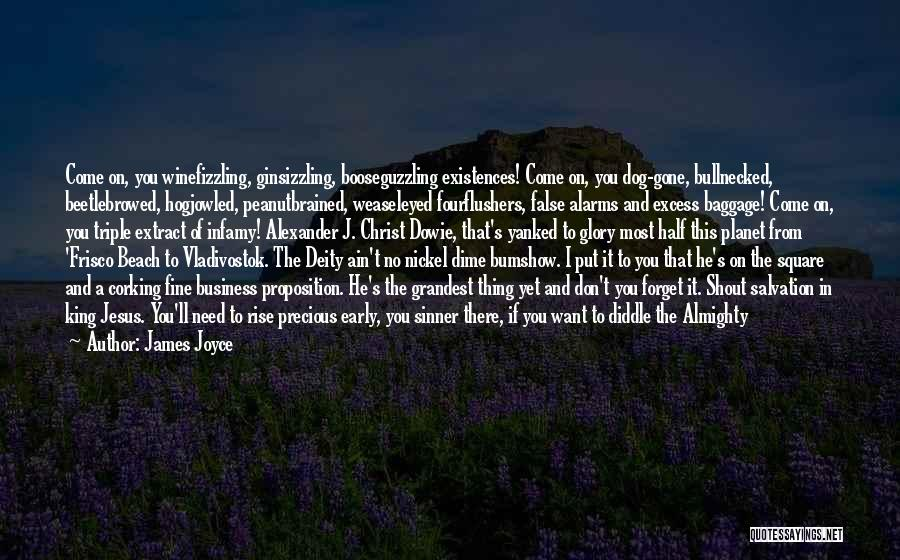Early To Rise Quotes By James Joyce