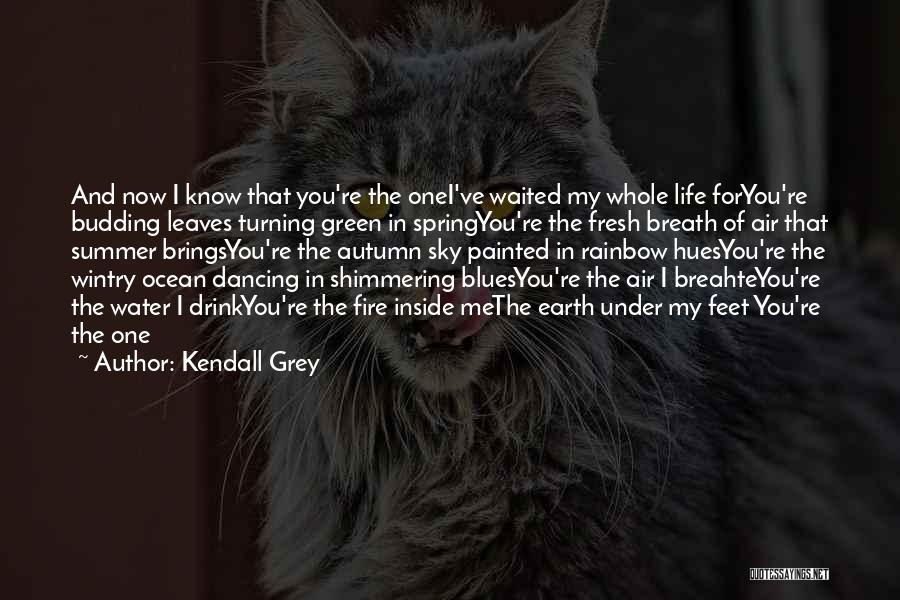 Earth Air Fire Water Quotes By Kendall Grey