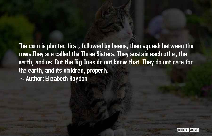 Earth And Humans Quotes By Elizabeth Haydon