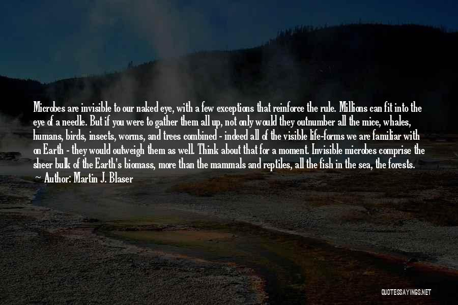 Earth And Humans Quotes By Martin J. Blaser