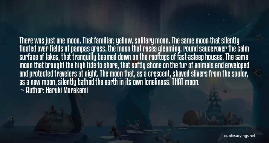 Earth And Moon Quotes By Haruki Murakami