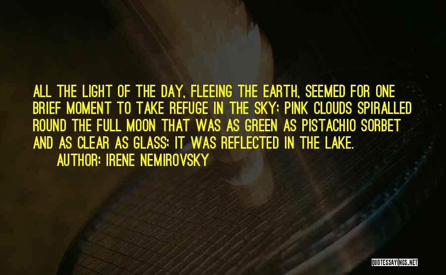 Earth And Moon Quotes By Irene Nemirovsky