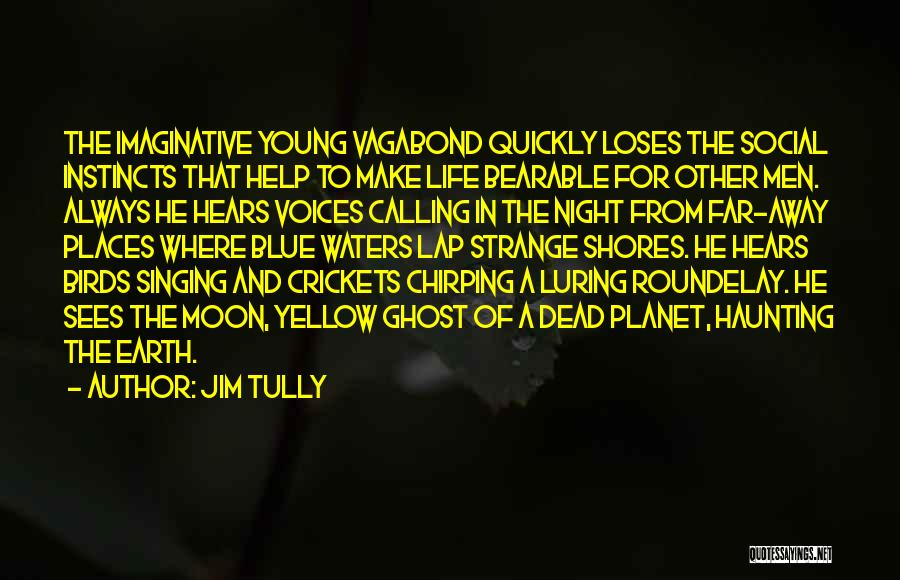Earth And Moon Quotes By Jim Tully