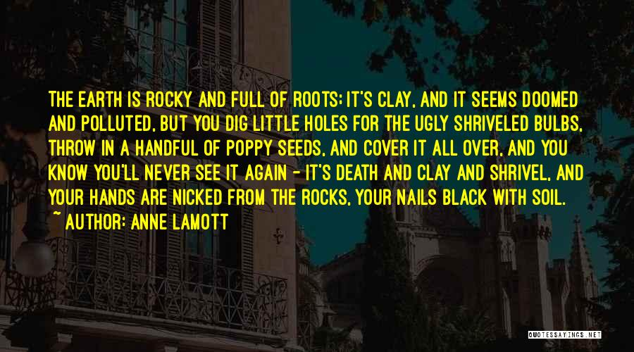 Earth Soil Quotes By Anne Lamott