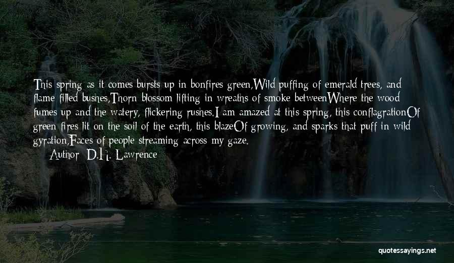 Earth Soil Quotes By D.H. Lawrence