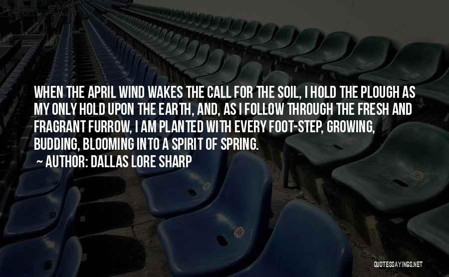 Earth Soil Quotes By Dallas Lore Sharp