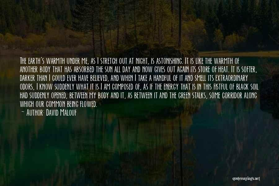 Earth Soil Quotes By David Malouf