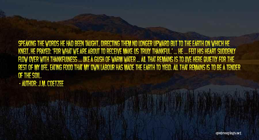 Earth Soil Quotes By J.M. Coetzee