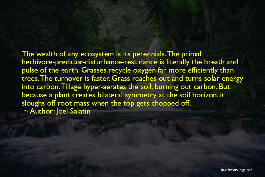 Earth Soil Quotes By Joel Salatin