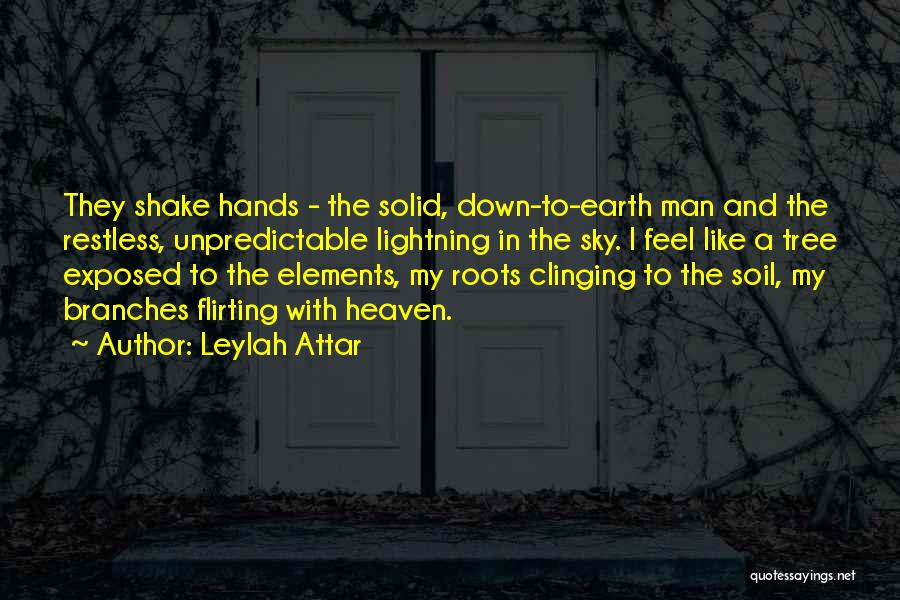 Earth Soil Quotes By Leylah Attar
