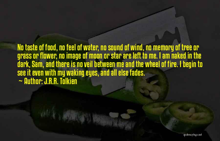 Earth Wind Fire Quotes By J.R.R. Tolkien