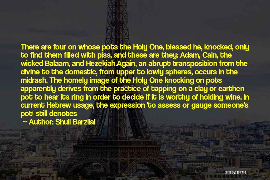 Earthen Pot Quotes By Shuli Barzilai