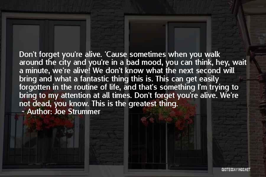 Easily Forgotten Quotes By Joe Strummer