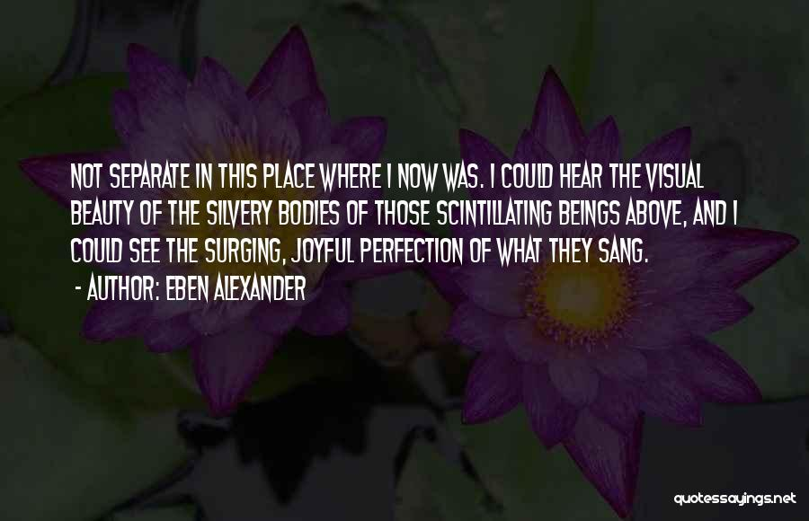 Eben Alexander Quotes 1655789