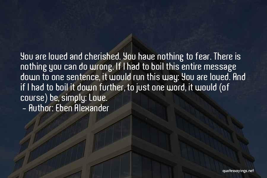 Eben Alexander Quotes 1947663