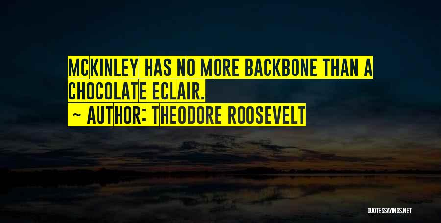 Eclairs Quotes By Theodore Roosevelt