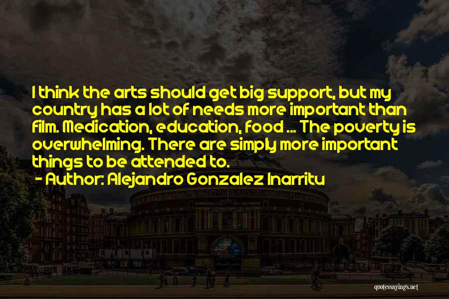 Education Is More Important Quotes By Alejandro Gonzalez Inarritu