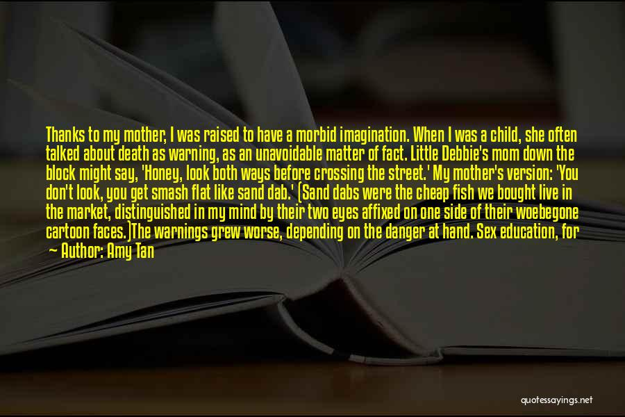 Education Version Quotes By Amy Tan