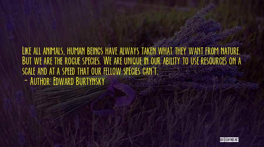 Edward Burtynsky Quotes 1052986