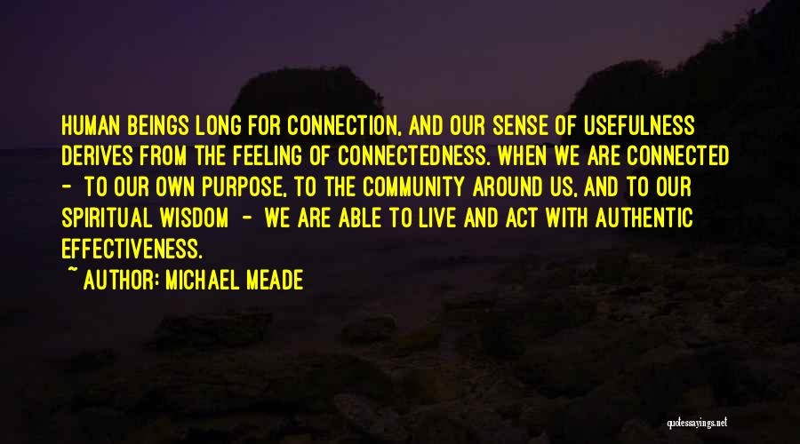 Effectiveness Quotes By Michael Meade