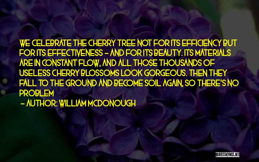 Effectiveness Quotes By William McDonough