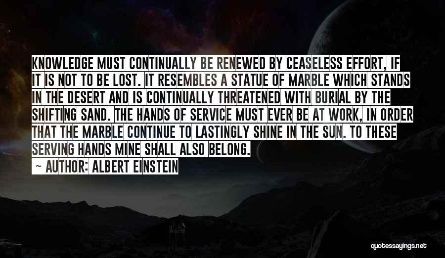 Effort In Work Quotes By Albert Einstein
