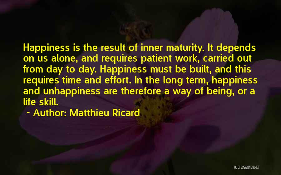 Effort In Work Quotes By Matthieu Ricard