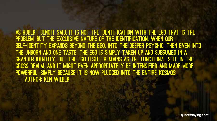 Ego Problem Quotes By Ken Wilber