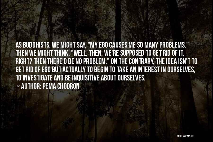 Ego Problem Quotes By Pema Chodron