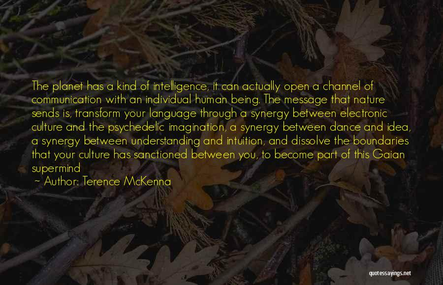 Electronic Communication Quotes By Terence McKenna